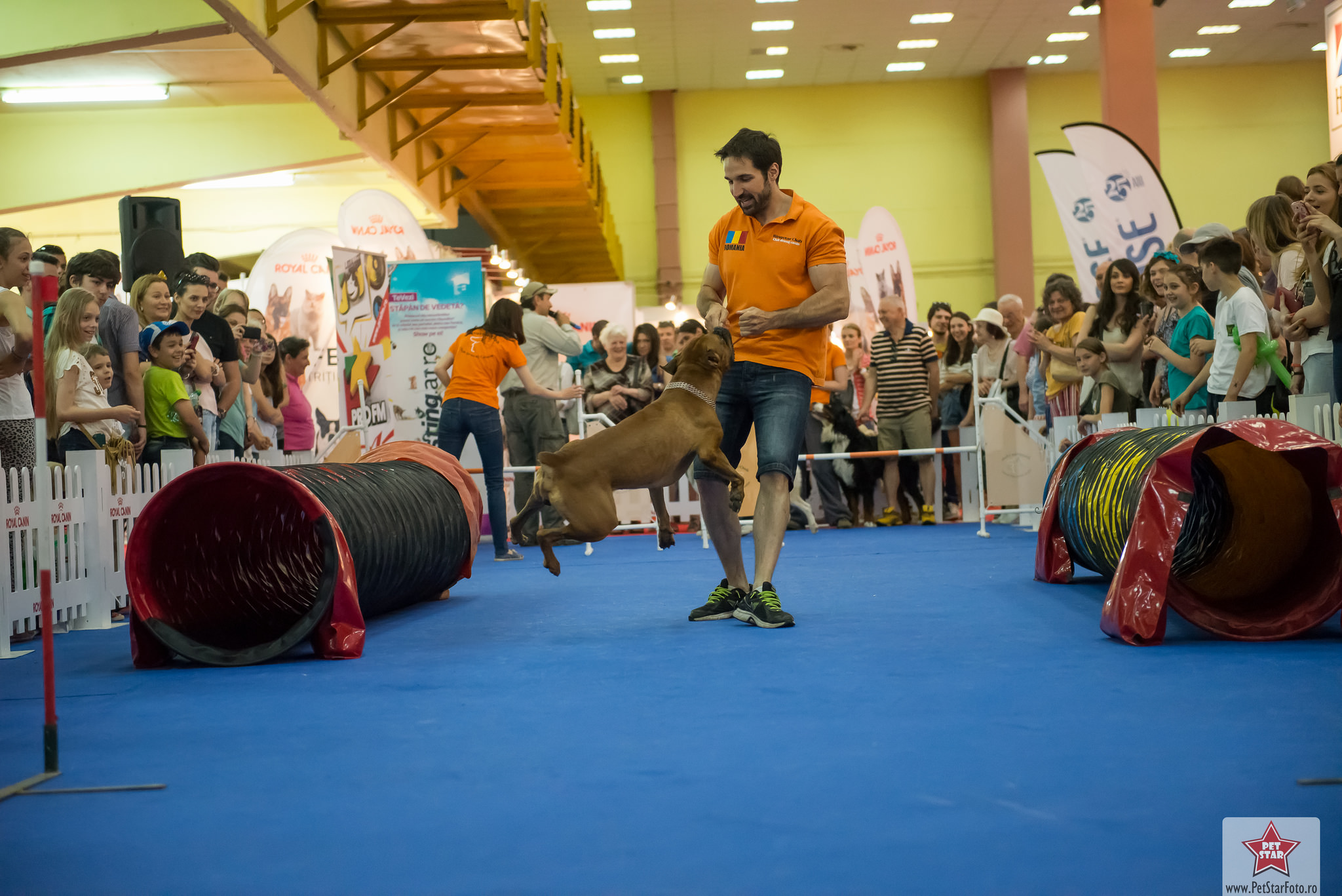 PetExpo găzduiește anul acesta 14 evenimente, jocuri și concursuri