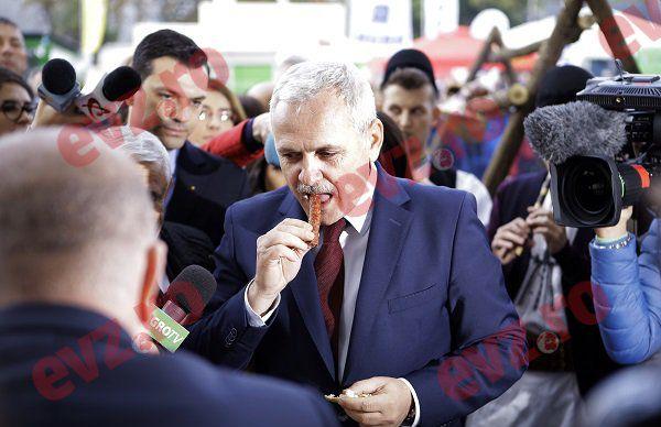 """""""NESIMȚIT și PENAL"""". Dragnea despre porcul sacrificat în vila SRI, cu Kovesi"""
