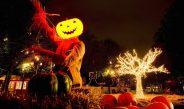 Un bărbat din Braşov a reclamat Halloween-ul la OPC