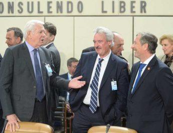Meleşcanu, avertisment la reuniunea miniştrilor de Externe din NATO