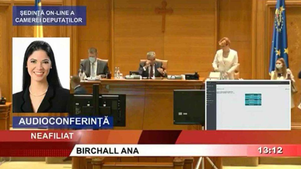 """Ana Birchall: Avem o nouă """"Marți Neagră"""", după votul deputaților PSD privind deființarea SIIJ"""