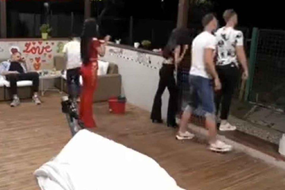 Cățelușă gestantă, lovită cu picioarele în burtă într-o emisiune Antena 1. Kola Kariola, apel