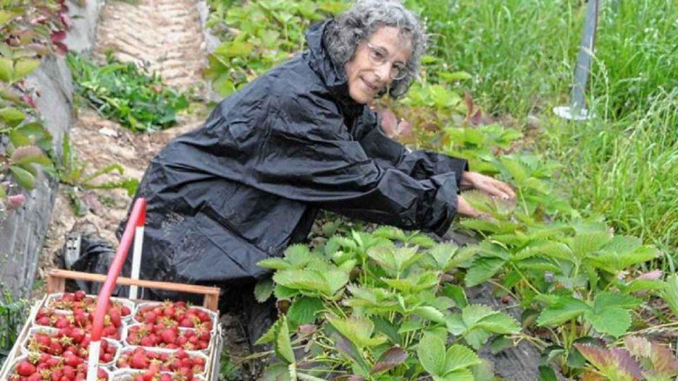 Regine, jurnalista german care s-a angajat la o fermă de căpșuni unde lucrează români. FOTO: Weiler Zeitung