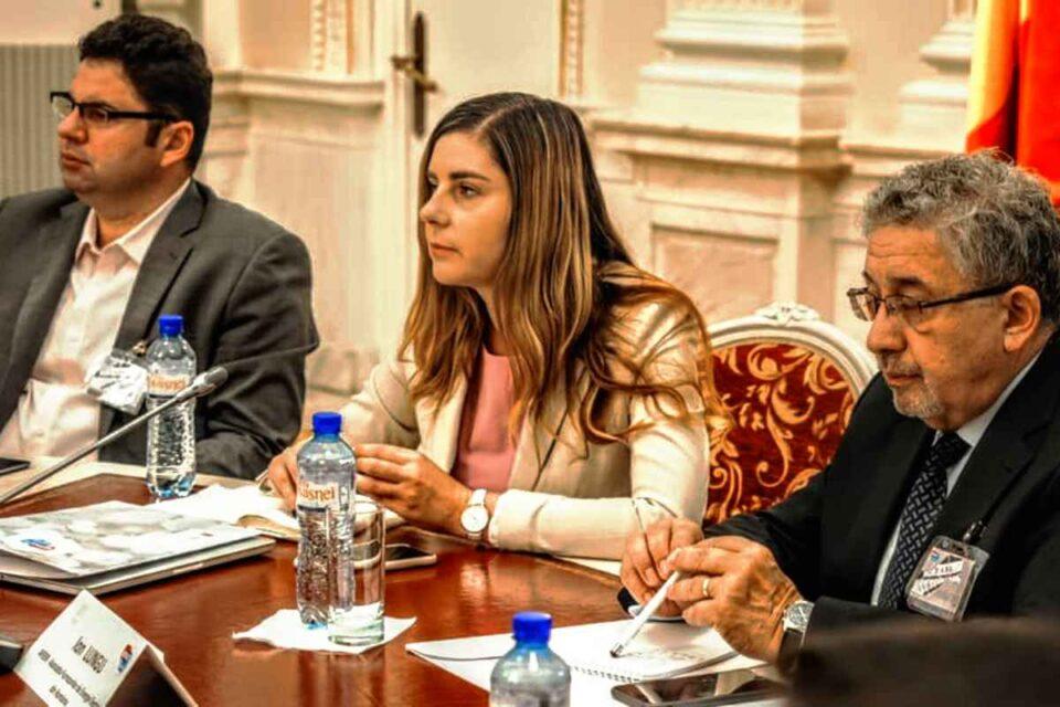 Ioana Petrescu, fost ministru de Finanţe în Guvernul Ponta, şi-a dat demisia din Pro România