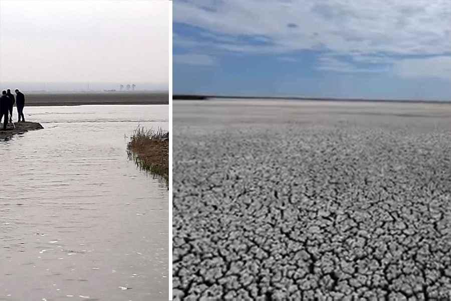 Lacul Nuntaşi din Rezervaţia Biosferei Delta Dunării are din nou apă