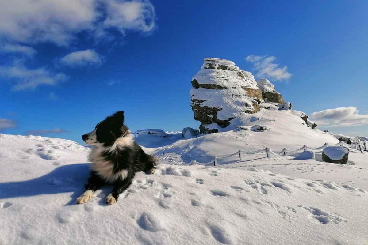 Salvamont Prahova: Risc mare de avalanşă în Munţii Bucegi, Baiului şi Ciucaş. foto: Salvamont Prahova
