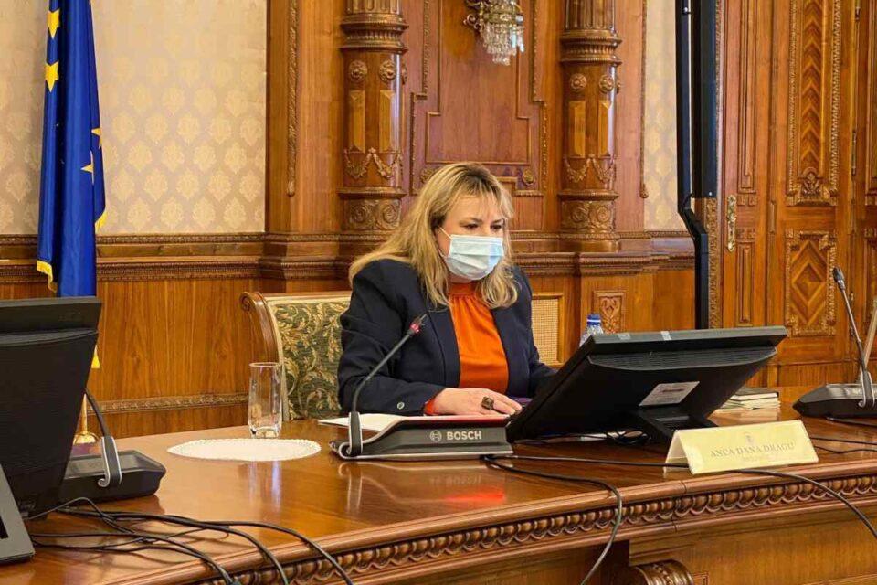"""Anca Dragu vrea dezbaterea moțiunii de cenzură: """"Ne obligă Constituția"""""""