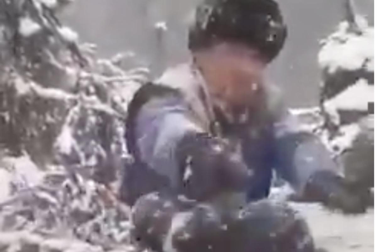 Ministerul Mediului, despre agresarea puilor de urs: Bărbații care i-au aruncat în zăpadă sunt lucrători silvici în Harghita și riscă închisoare sau amendă