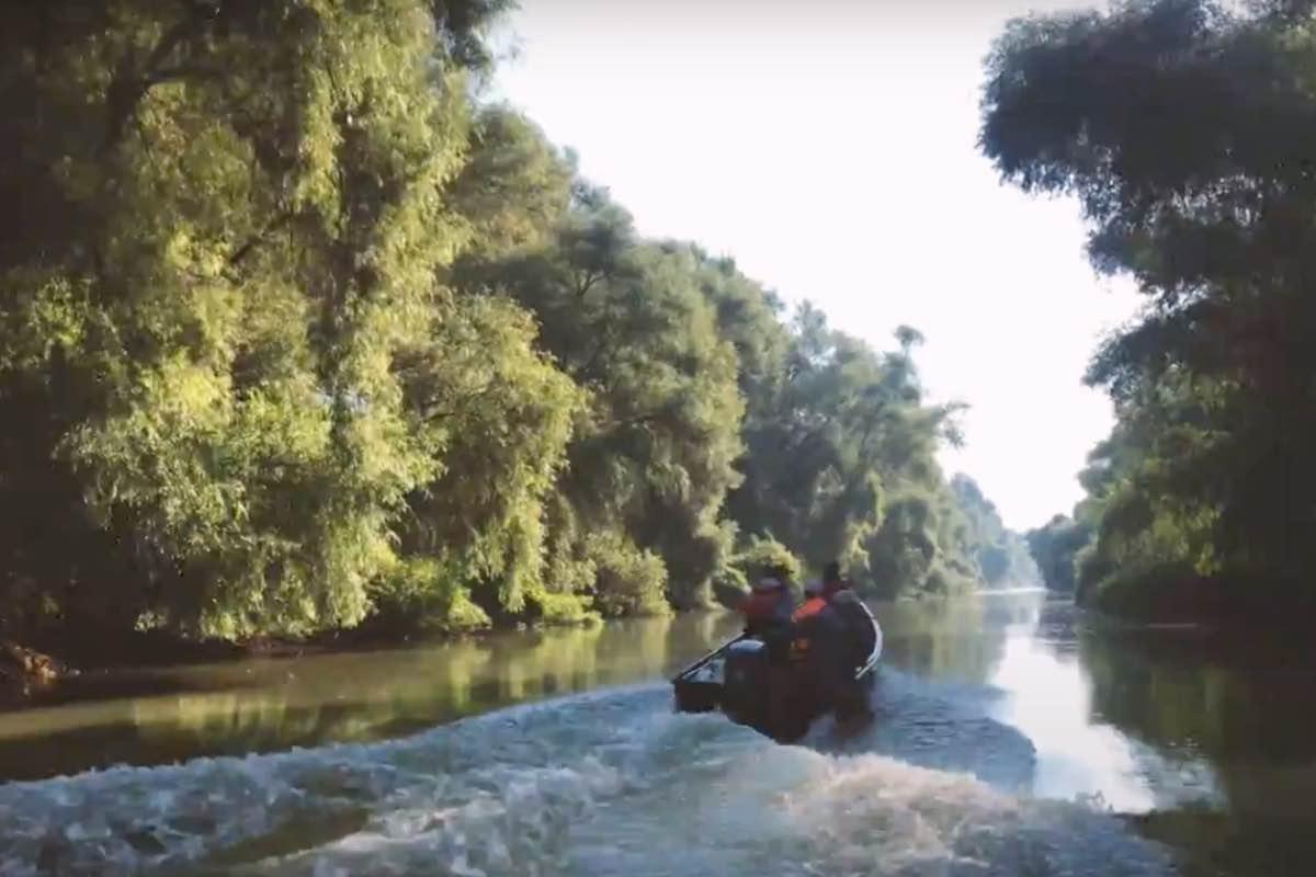 USR-PLUS caută guvernator pentru Delta Dunării. Iată ce condiții trebuie să întrunească doritorii