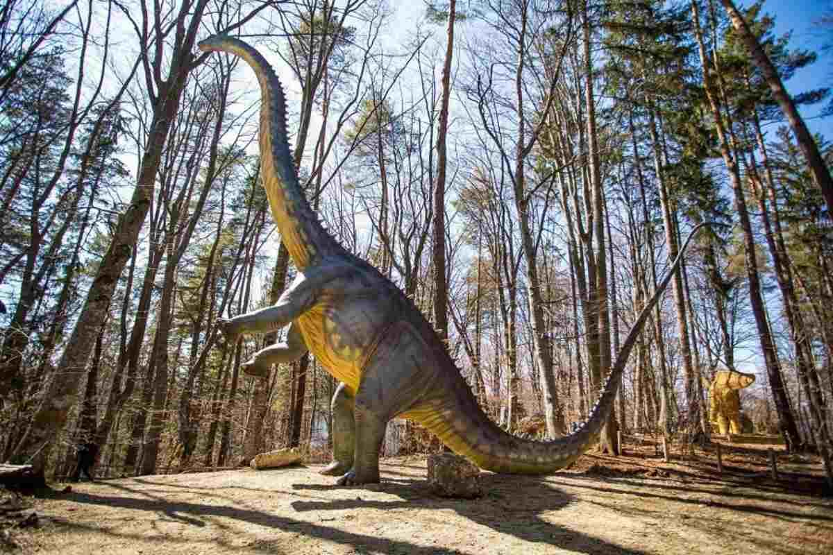 Dino Parc Râşnov expune cel mai înalt dinozaur din sud-estul Europei: DIPLODOCUS