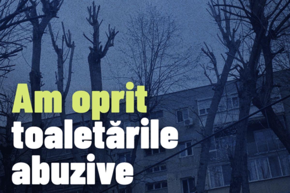 Nicuşor Dan a oprit toaletarea a sute de arbori, pentru a proteja vegetația Bucureștiului