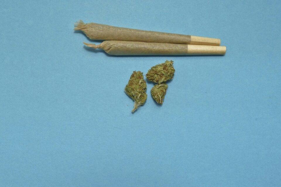 Cinci persoane, reținute sub acuzația că ar fi procurat și vândut cannabis şi substanţe psihoactive