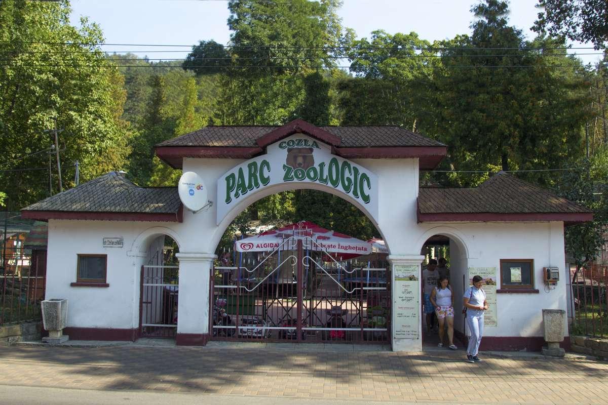 Grădina zoologică din Piatra Neamț va fi desființată. Controverse privind vechimea acesteia