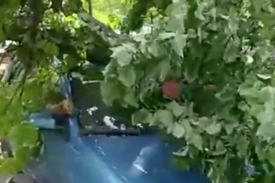 Băluță anunță că îi sprijină pe proprietarii mașinilor avariate de furtuna de vineri